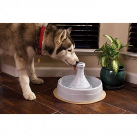 DRINKWELL Fontaine 360° - Pour chat et chien