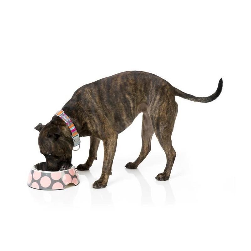 FUZZYARD-Gamellel-Pink-Bubblelicious-L-16-5-x-7-5-cm-Pour-chien miniature 2
