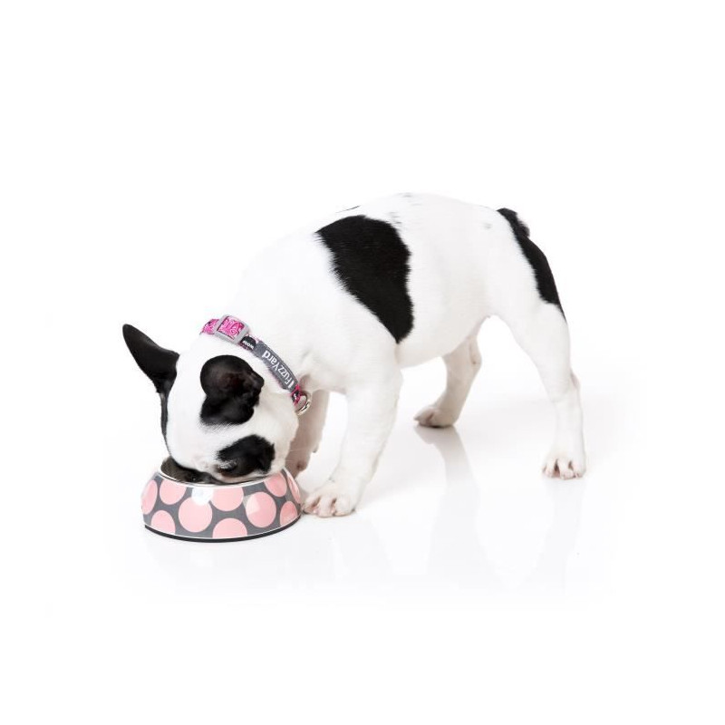 FUZZYARD-Gamellel-Pink-Bubblelicious-L-16-5-x-7-5-cm-Pour-chien miniature 3