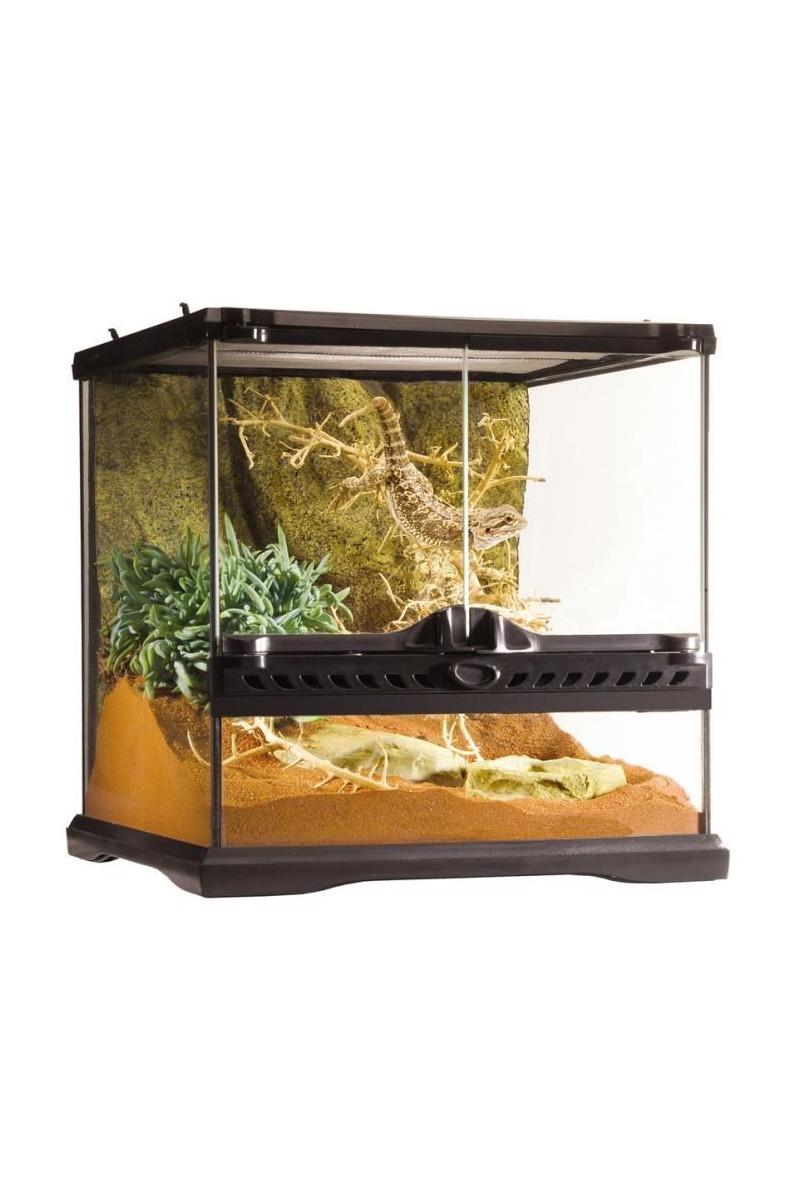 Table Basse Terrarium A Vendre détails sur terrarium en verre 30x30x30
