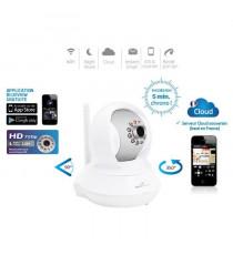 Bluestork Caméra Cloud HD motorisée d'intérieur Wi