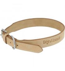 DIEGO & LOUNA Collier en cuir naturel - 50 cm - Pour chien