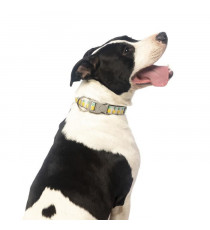 FUZZYARD Collier néoprene Piña Colada M - 32-50 x 2 cm - Pour chien