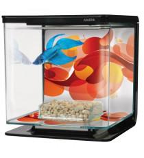 BETTA ART DECO starter kit aquarium 2 L
