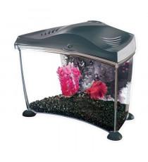 MARINA Kit aquarium Graphite pour betta - 6,7 L