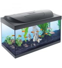 TETRA Aquarium Starter Line 54 L - 30x60x30 cm - Pour poissons tropicaux